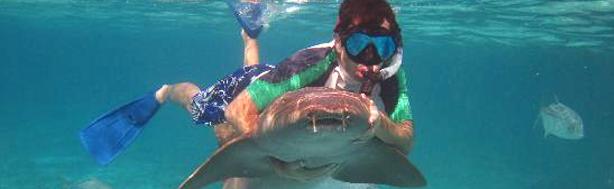 Full Day Snorkel