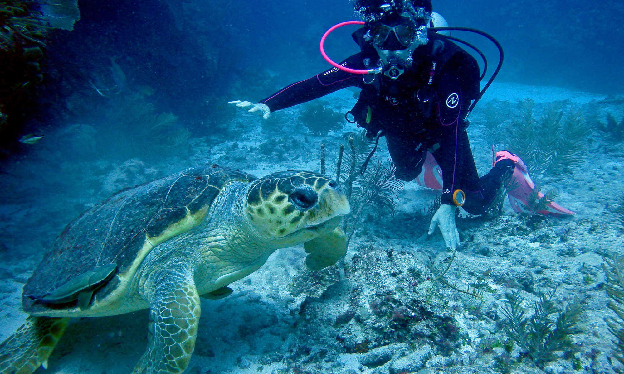 Belize Magical Adventures